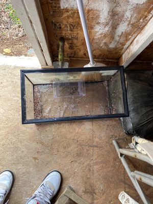 10 gallon fish tank for Sale in Silver Spring, MD