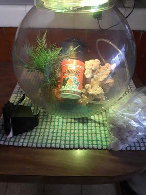 Globe Aquarium Kit for Sale in Whittier, CA