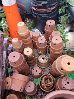 """Orchid clay pots/regular pots Up to 7"""" 3 to 8 dollars each.. Bulk deal for better prices for Sale in Fort Lauderdale, FL"""