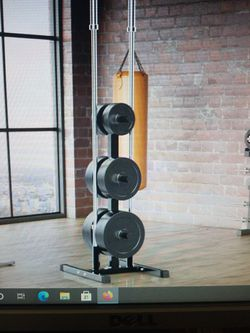 Olympic Plate & Bar Holder Weight Bumper Plates Dumbbells Tree Stand Rack for Sale in Rochester,  NY