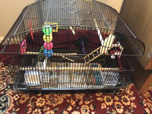 Bird Cage and Accessories for Sale in Baltimore, MD