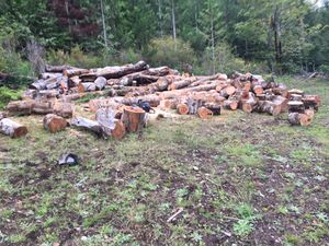 Mixed Firewood for Sale in Montesano, WA