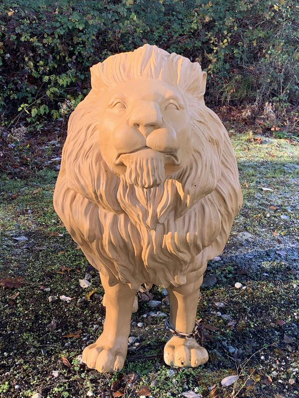 Life Size Lion Statue About 36 Tall Amp 48 Longe For Sale