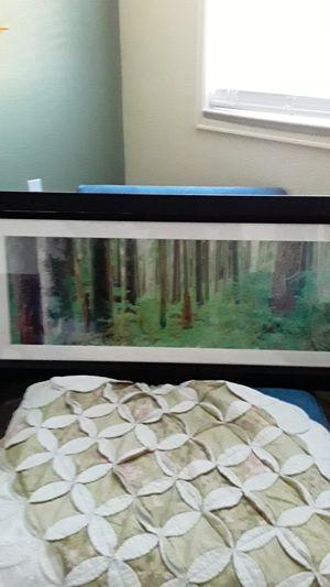 2 ' × 4 ' framed art for Sale in Littleton, CO