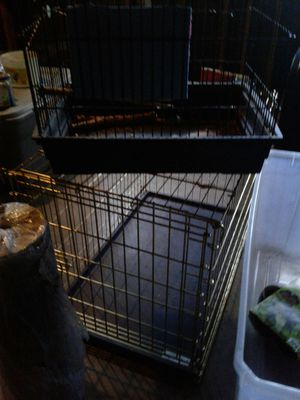 Pet cages diffent sizes for Sale in Tampa, FL