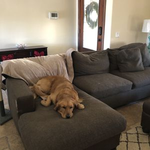 Free Zgallerie Couch for Sale in Escondido, CA