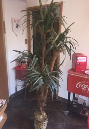 Approx )' tall faux artificial reef palm plant good condition. for Sale in Fresno, CA