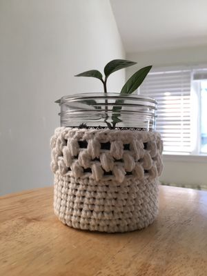 Plant pot cover/plant sweater for Sale in Waldwick, NJ