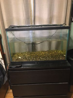 29 Gallon Fish Tank W/LED Strip Light for Sale in Chelmsford, MA