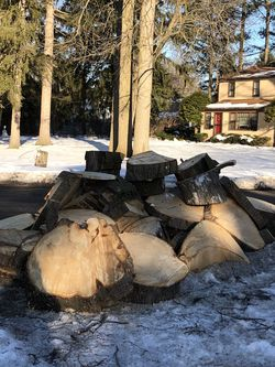 Free Fire Wood Or Project Wood! for Sale in Rochester,  NY