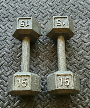 30lbs dumbbell set for Sale in Bothell, WA