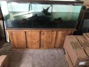 110 Gallon Aquarium for Sale in Spring Valley, CA