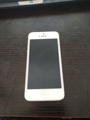 Silver iPhone 5 16gb for Sale in Tampa, FL