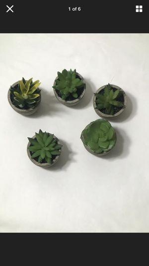 Artificial Succulent Plants Fake Artificial Bonsai with Pots Decorative Ball X5 for Sale in Escondido, CA