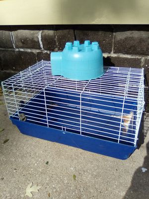 Guinea pig cage for Sale in Waterloo, IA