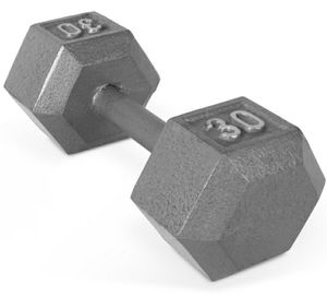 30 lbs IRON single dumbbell for Sale in Casselberry, FL