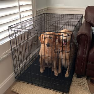 XL Dog Crate/kennel for Sale in Orlando, FL
