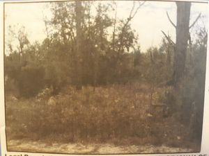1.25 acres in levy county Bronson fl for Sale in Bronson, FL