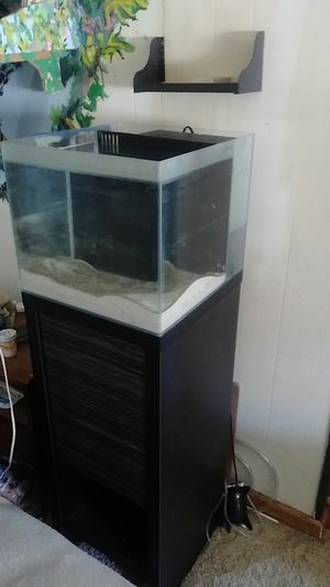 Fully functional salt water tank and stand. for Sale in Sylvania, OH