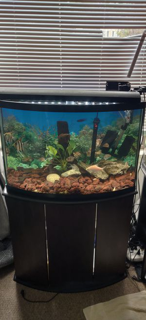 Fish tank for Sale in Largo, FL