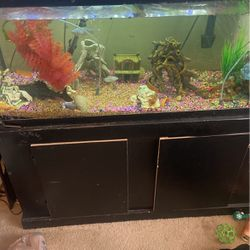 Fish Tank For Sale for Sale in San Diego,  CA