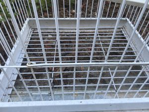 Large cage for Sale in Danville, CA
