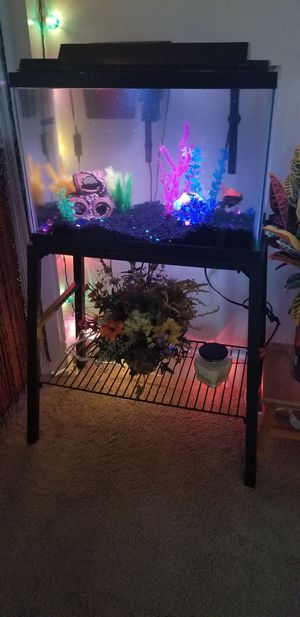 Complete 20 gal tank/stand for Sale in Lynchburg, VA