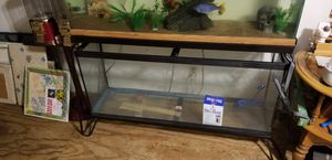 50gal fish tank for Sale in Webster Groves, MO