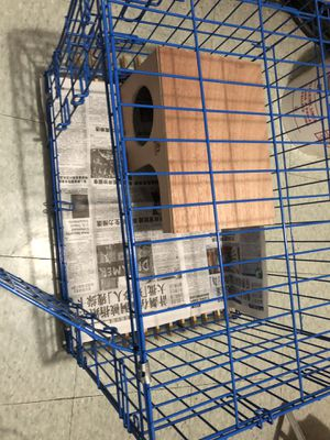 Puppy cage. Guinea pig. cage. for Sale in Brooklyn, NY