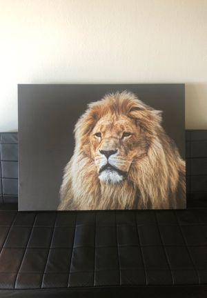 Alpha Male Lion canvas for Sale in Seattle, WA
