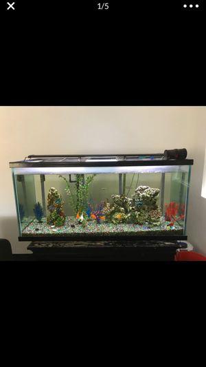 75 gallon custom fish tank thick glass for Sale in Desert Hot Springs, CA
