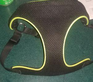 Medium dog harness for Sale in Berwick, PA