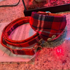Small Dog Sized Collar for Sale in Corona, CA