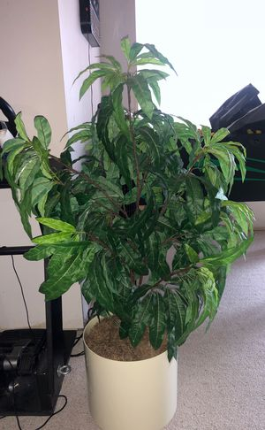 Fake decoration plant for Sale in Plymouth, MI