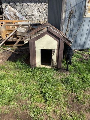 Dog house for Sale in Oklahoma City, OK