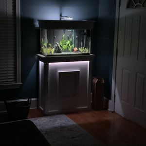Fish Tank 30 Gallon for Sale in Somerville, MA