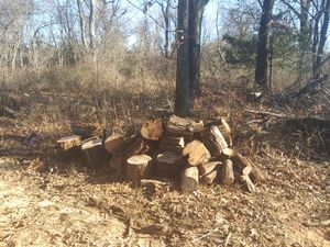 Seasoned firewood (delivery available extra, stacking extra ) for Sale in Kansas City, MO