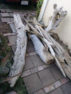 Drift wood/yard/office/pond/planter for Sale in Lodi, CA
