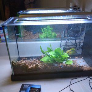 Fish Tank for Sale in Whittier, CA