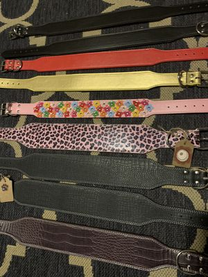 Leather collars for Sale in Fort Worth, TX