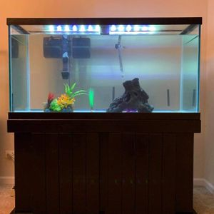 90 gallon fish tank aquarium for Sale in West Chicago, IL