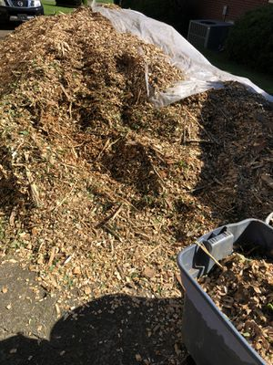 Free wood chip Antioch near lake *still available for Sale in Nashville, TN