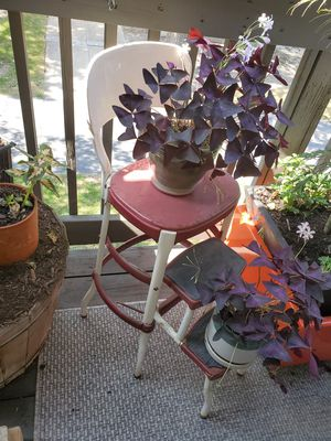 Antique metal step stool for Sale in Arlington Heights, IL