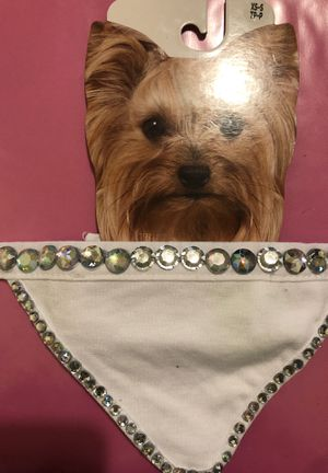 Blinged out!!!! Dog Bandana for Sale in Dearborn, MI
