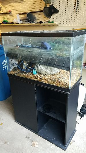 35 Gallon Fish Tank with Stand for Sale in Naperville, IL