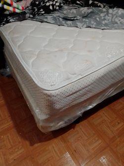 Queen bed+ box frame for Sale in Abilene,  TX