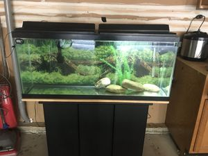 Fish tank for Sale in Herndon, VA