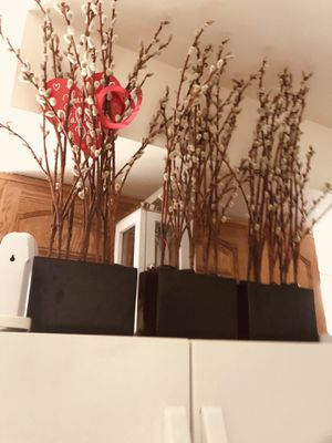 3 Artificial plants for Sale in Annandale, VA