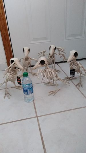 Halloween Decorations Posable Crow Skeletons for Sale in Gardena, CA