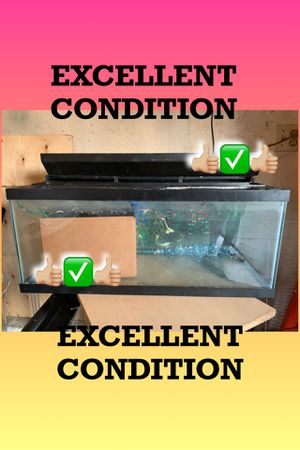 20 Gallon Fish Tank for Sale in Los Angeles, CA